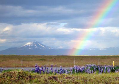 Vulkanen Hekla og en smuk regnbue - foto: Lars Viberg - ISLANDSREJSER