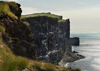 Latrabjarg, Europas største fuglefjeld ved Vestfjordene i Island