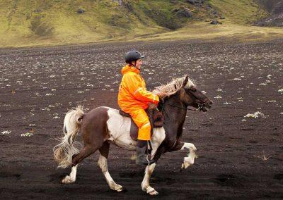 Ridetur på Islandske heste i Island