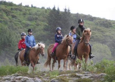 Ridetur i Island på de skønne og fortrolige islandske heste.