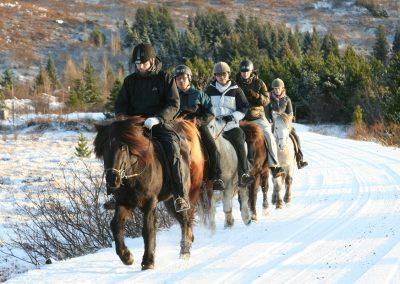 Rideture i Island på islandske heste