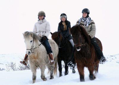Skøn ridetur på islandske heste - fantastisk på alle årstider i Island