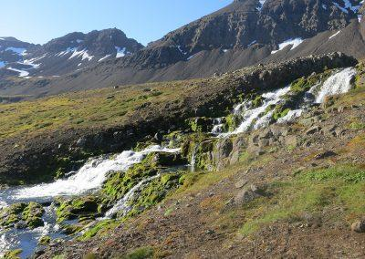 Østfjordene i Island - hike med lokale