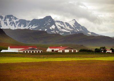 Gård ved Borgarfjördur området med bjerge i baggrunden