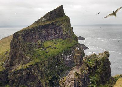 Den smukke ø Mykines på Færøerne. Islandsrejser arrangere rejsen for dig.