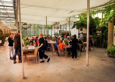 Ved Fridheimar i Reykholt kan man spise lækker tomatsuppe i den hyggelige café inden i drivhusene :: foto: Lars Viberg - ISLANDSREJSER