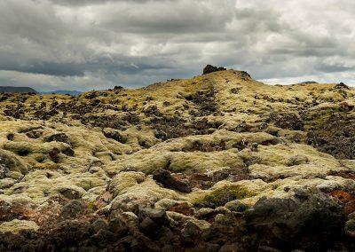 Mosbegroede lavaområder efter Hengill vulkanen