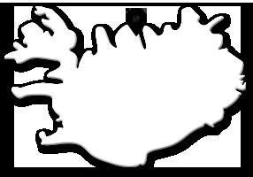 Hvalsafari på Island - her fra Dalvik. Pukkelhval, vågehval, spækhugger, blåhval, finhval...