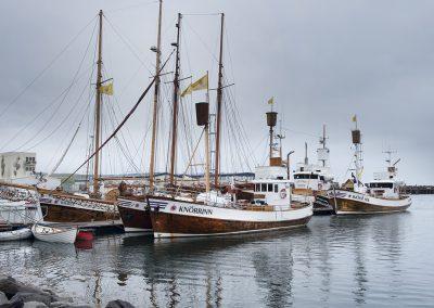 De hyggelige både ved Húsavik der bruges til hvalsafari