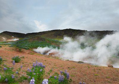 Geotermiske Hveragerdi :: foto: Lars Viberg - ISLANDSREJSER