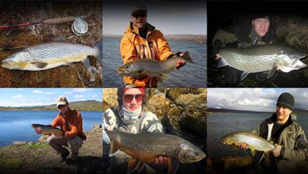 Lystfiskeri i Island med fiskekortet - ørredfiskeri og røding