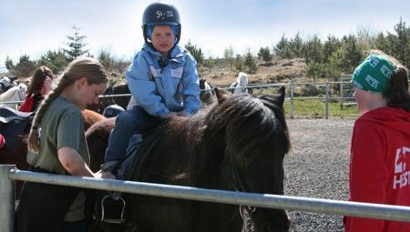 Familievenlig ridetur på islandske heste i Island