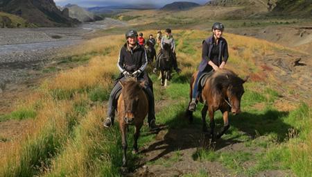 Islandske heste og rideture med ISLANDSREJSER - tag en snak med Mette