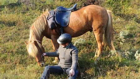 Den Gyldne Cirkel i Island - med ridetur på islandske heste