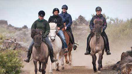 Islandske heste - rideture med ISLANDSREJSER - en af vores specialer