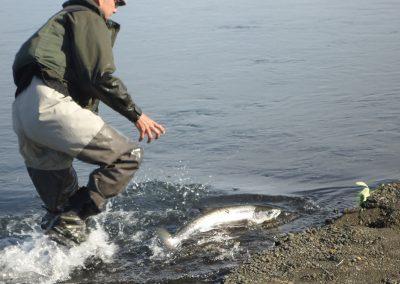 Landing på islandsk maner