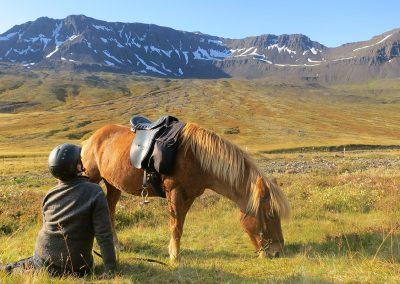Pause fra ridetur - her ved de smukke Østfjorde