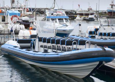 Hvalsafari fra Húsavik er også mulig i en RIB båd