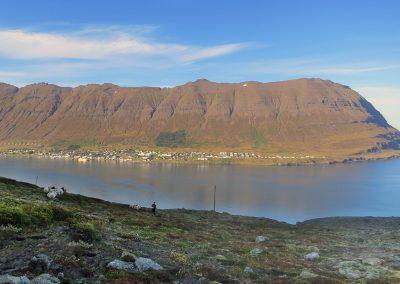 En af de smukke østfjorde med udsigt til byen Neskaupstadur i Island