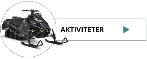 Aktiviteter i Island - hvalsafari, snescooter, river rafting, islandske heste... med ISLANDSREJSER.