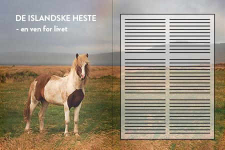 Artikler om Island. Deislandske heste. Dit rejsebureau med rejser til Island - ISLANDSREJSER