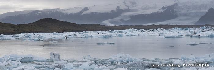 Vatnajökull Østfjordene i Island på kør-selv ferie med ISLANDSREJSER og rejser til Island