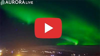 Nordlys Island - rejser til Island med ISLANDSREJSER