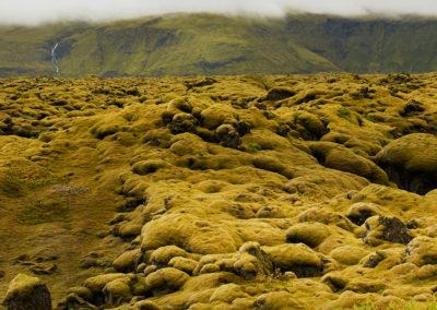 Eldhraun lavamarker efter Laki-vulkanen på kør-selv ferie bilferie og grupperejser i Island med ISLANDSREJSER