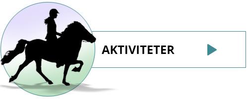 Akriviteter og dagture i Island