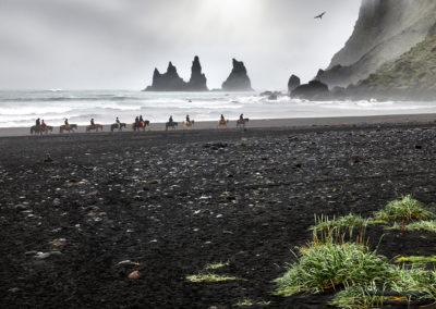 Islandske heste og Reynisdrangar ved Vik på kør-selv ferie, bilferie og rejser til Island med ISLANDSREJSER